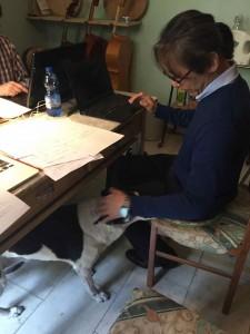 Maestro Coniaの愛犬「ユーべ」が疲れた私達を癒してくれます